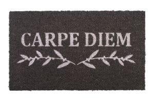 Fußmatte Gift KOKOS 45x75cm, Carpet Diem, grau/weiß