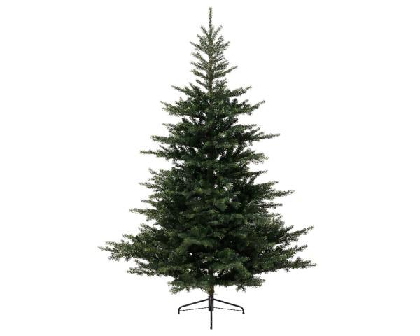 Weihnachtsbaum GRANDIS FIR
