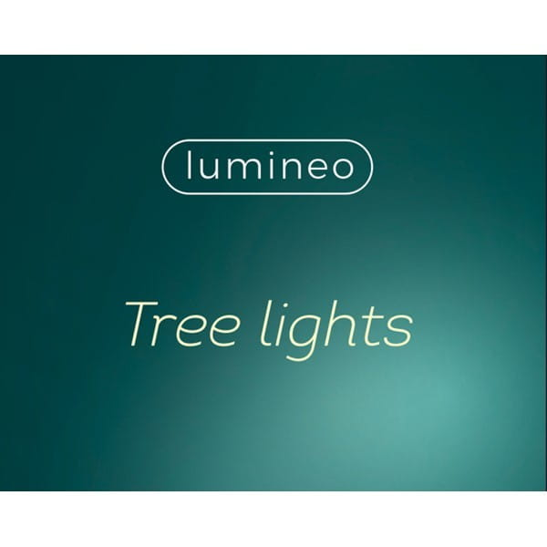 LED Gluewuermchen außen 9m